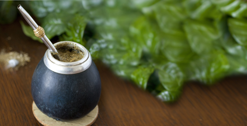 What is Yerba Mate